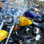 adhesivos moto