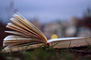 libro abierto sobre el césped