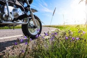Vista de la rueda de una moto en una carretera en curva con flores a los márgenes del arcén