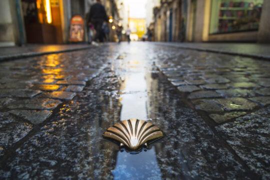 símbolo del camino de Santiago en una calle de Burgos