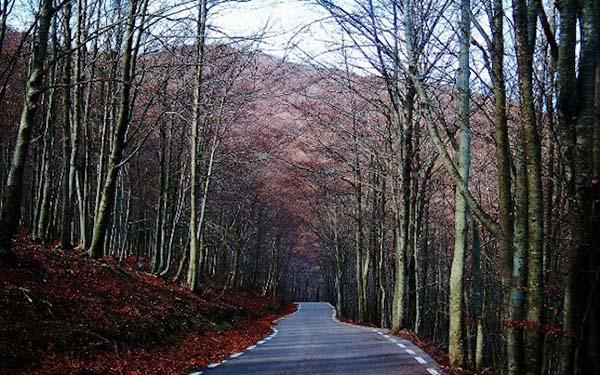 Imagen de una de las rutas moteras de Barcelona. | Pixabay