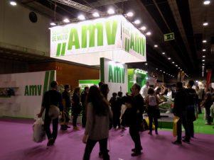 AMV Seguros en Vive la Moto